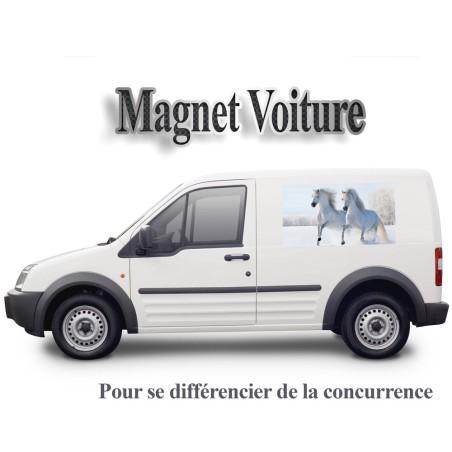 Publicité magnétique pour voiture